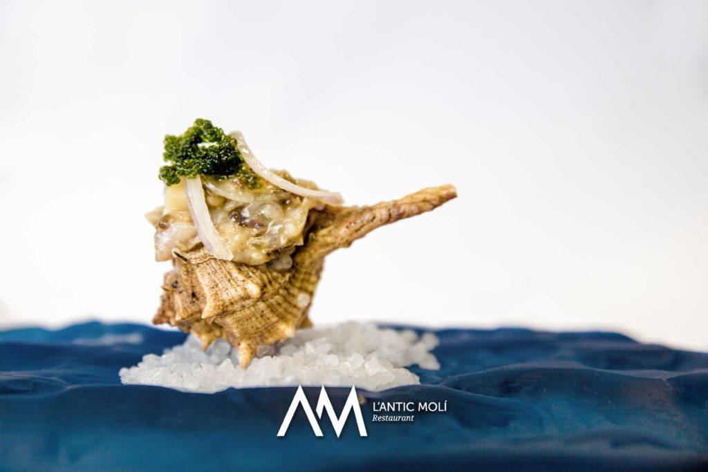 Tartar fred de galera i caragols de mar amb tomàquet, ceba i raïm de mar